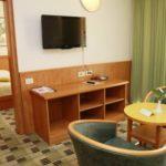 suite-hotel-svoboda
